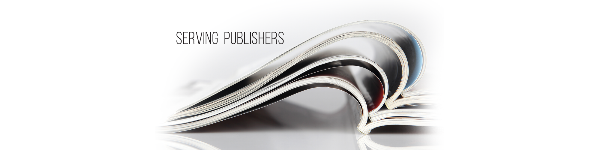 5-PublisherSlide